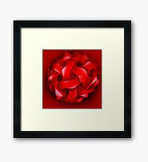 red lantern for Christmas Framed Print