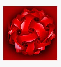 red lantern for Christmas Photographic Print