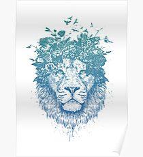 Floral lion Poster