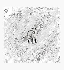 grey scale fox Photographic Print