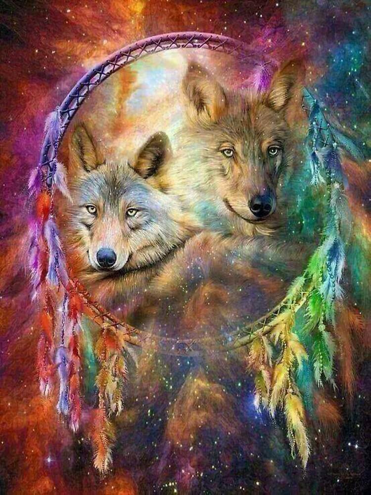 Rainbow Wolf Dreamcatcher by kiddruba