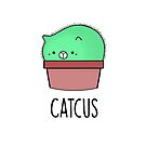 Catcus by Stacey Roman