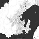Wellington Map Grau von HubertRoguski