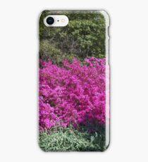Azalea Time iPhone Case/Skin