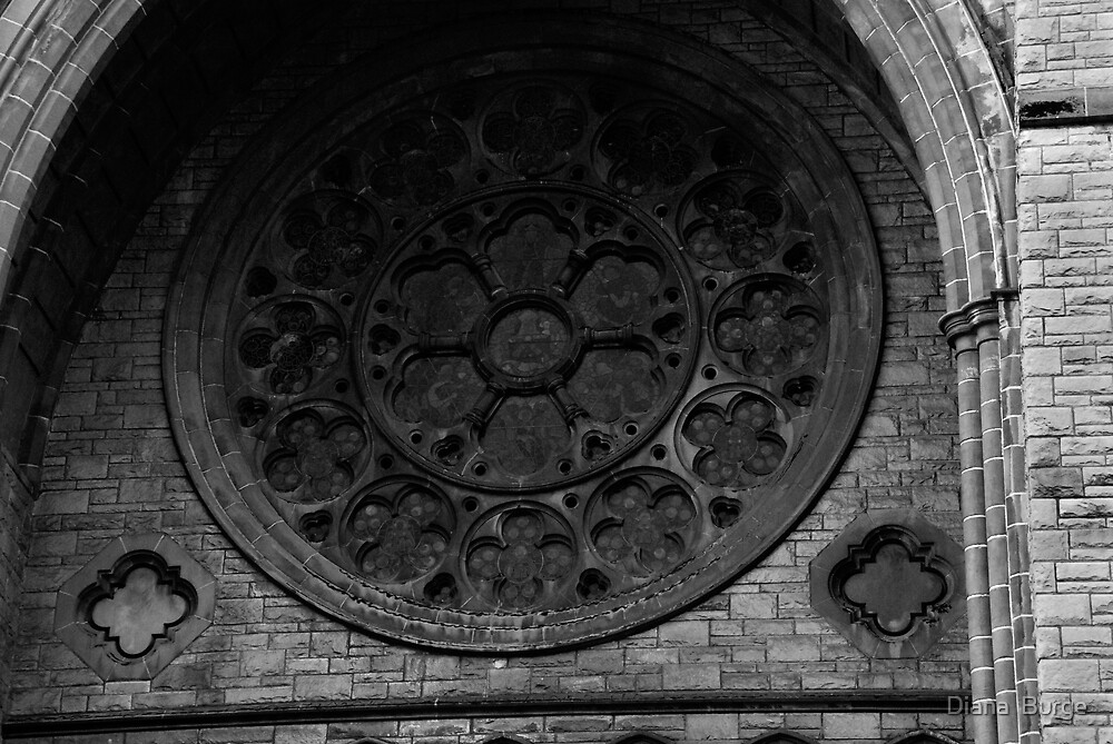 Rose window cathedral by Diana  Burge