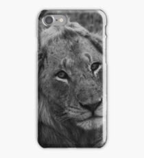 Scarface the lion  iPhone Case/Skin