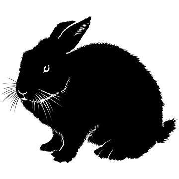 Black rabbit by fourretout