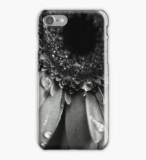 2010_37 iPhone Case/Skin