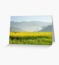 Yellow flowers covered by mist in the evening. Greeting Card