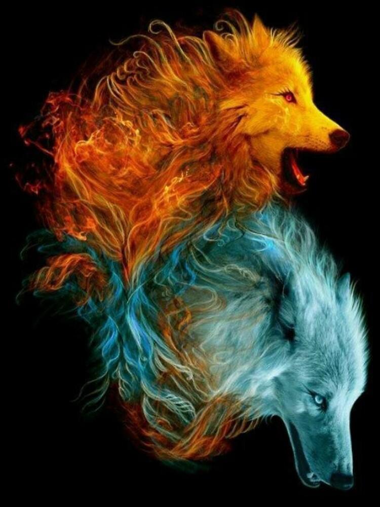 Fire & Ice by kiddruba