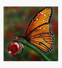 Macro Wonder Photographic Print