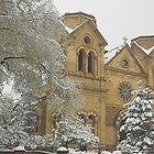 Saint Francis Cathedral by Tamas Bakos