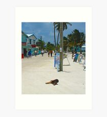 Caye Caulker, Belize Art Print