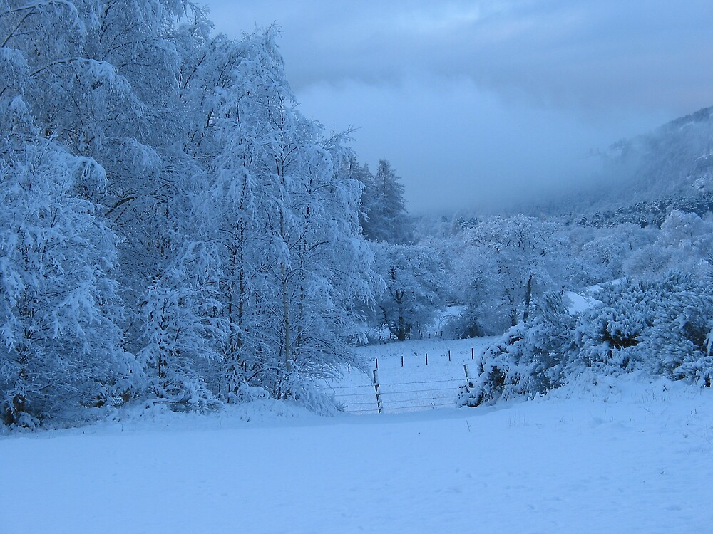 Snowy Scene in Scotland by Mike Paget