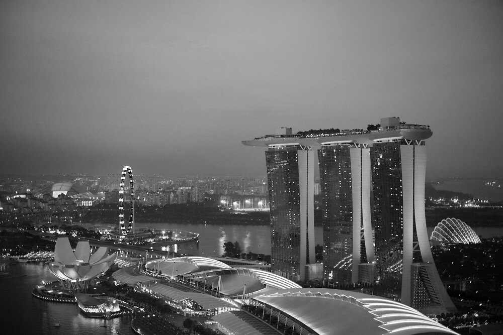 Marina Bay Sands Skyline by Craig Goldsmith