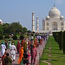 the Taj by BethKidd
