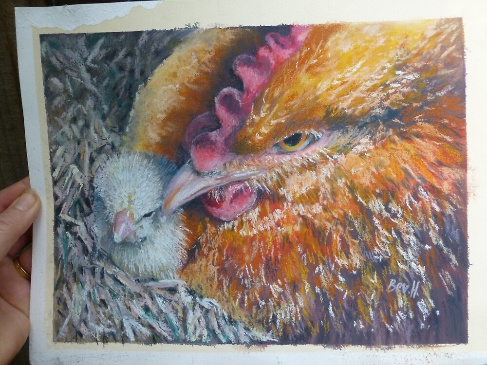 Hen & Chick by Bev Hardidge
