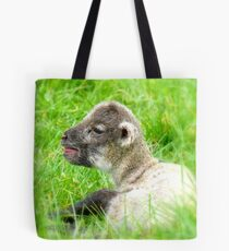 My Life Was In His Hands......Premature Lamb - NZ Tote Bag