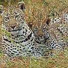 Mother and child(We are watching you!) by jozi1