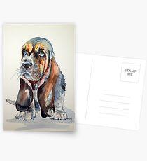 Basset hound Postcards