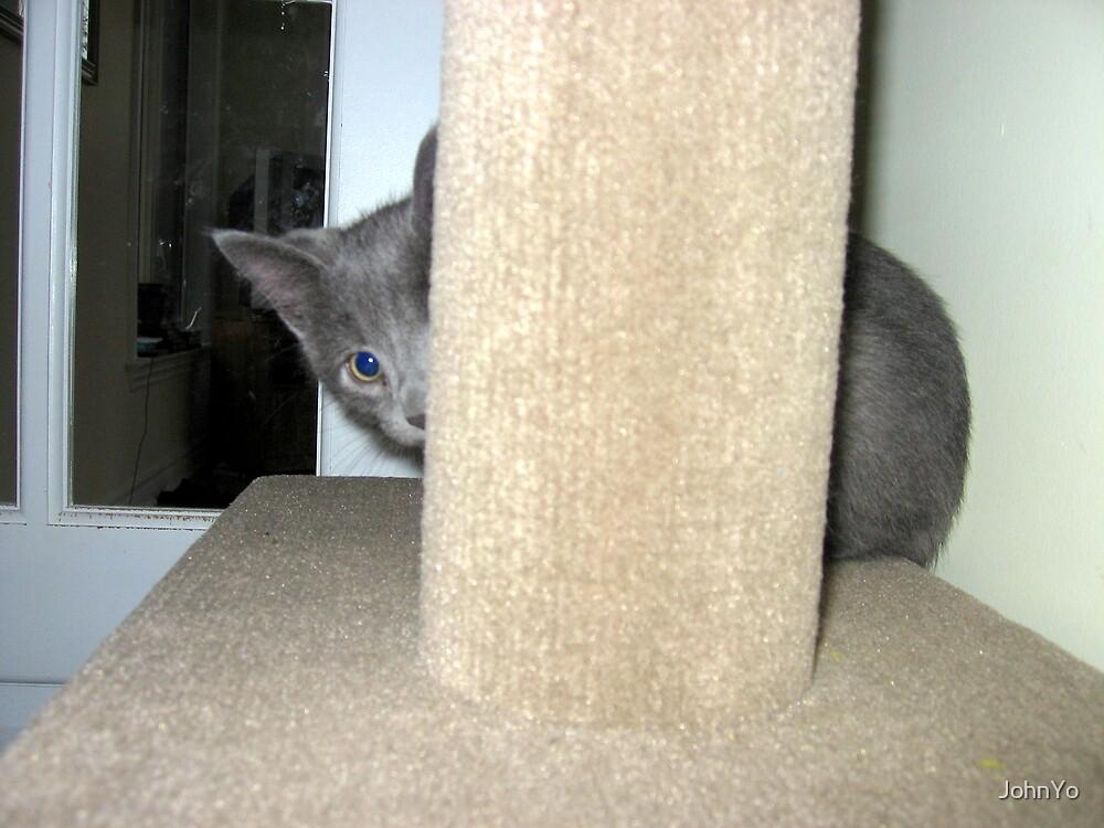 Peek-a-Boo by JohnYo