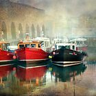 Seahouses Harbour Northumberland by Brian Tarr