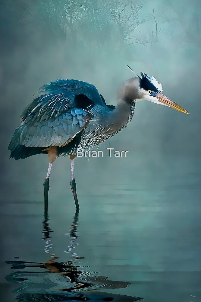 Blue Bayou by Brian Tarr