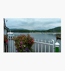 Bowness Flowers Photographic Print