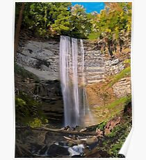 Delightful Waterfall Poster