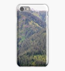 Forest and Mountains iPhone Case/Skin