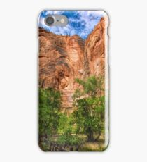 Zion Surreality iPhone Case/Skin