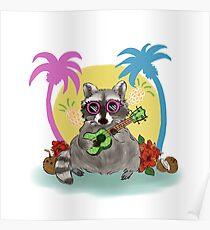 Tropischer Waschbär Poster