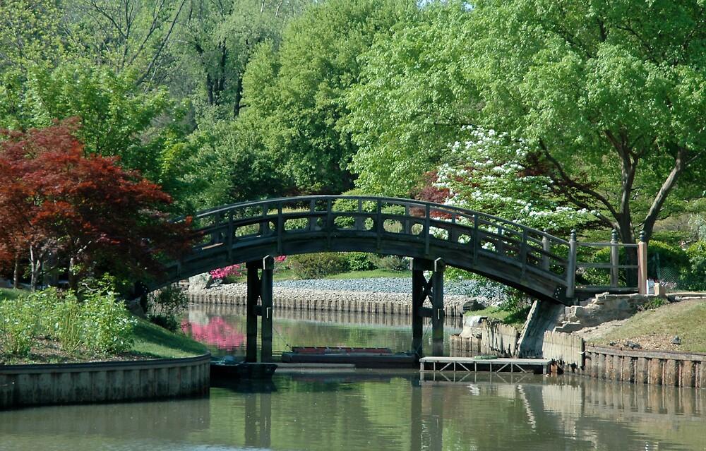 Lucky Bridge by Jim Caldwell