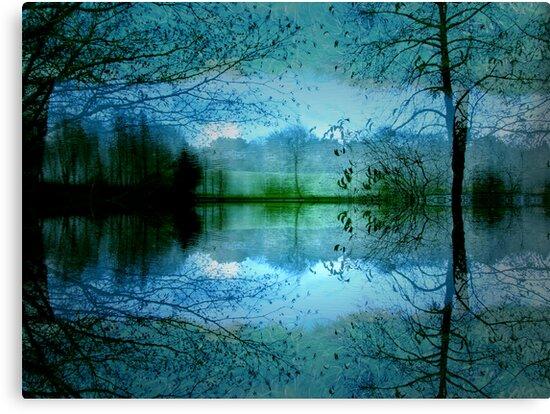 Dream State by Varinia   - Globalphotos