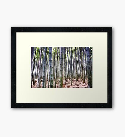 Bamboo Forest 3D (Kyoto, Japan) Framed Print