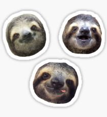 Sloth Heads Sticker