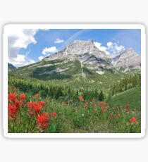 Summer in the Rocky Mountains Sticker