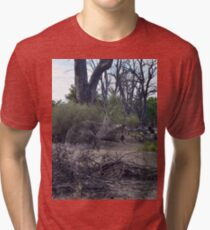 Ghostly Encounter With A Kangaroo Spirit Tri-blend T-Shirt