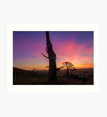 Flowerdale Sunset Art Print