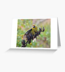 PARROT ~ Green Rosella by David Irwin Greeting Card