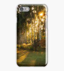 Sunburst at Litchfield National Park iPhone Case/Skin