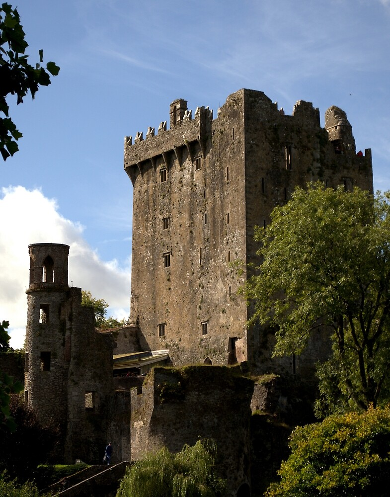 Blarney Castle keep - Ireland by Kerry LeBoutillier