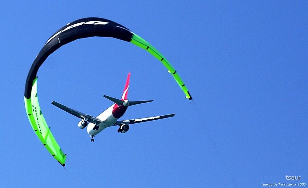 A Moment In Flight (Sydney 2005) by tsaur