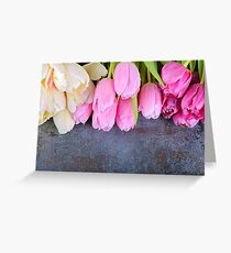 Fresh pink tulips on gray stone background Greeting Card