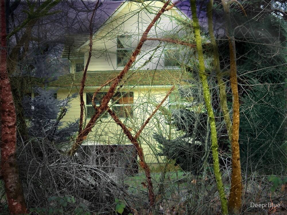 The House by DeeprBlue