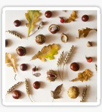 Autumn riches Sticker