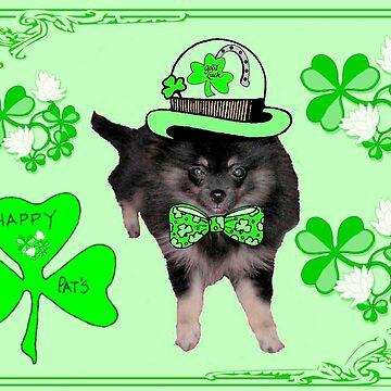 Irish Pomeranian by kabsannie