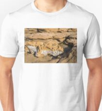 Ancient Seabed Exposed Unisex T-Shirt