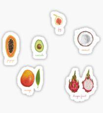 fruit watercolor  Sticker