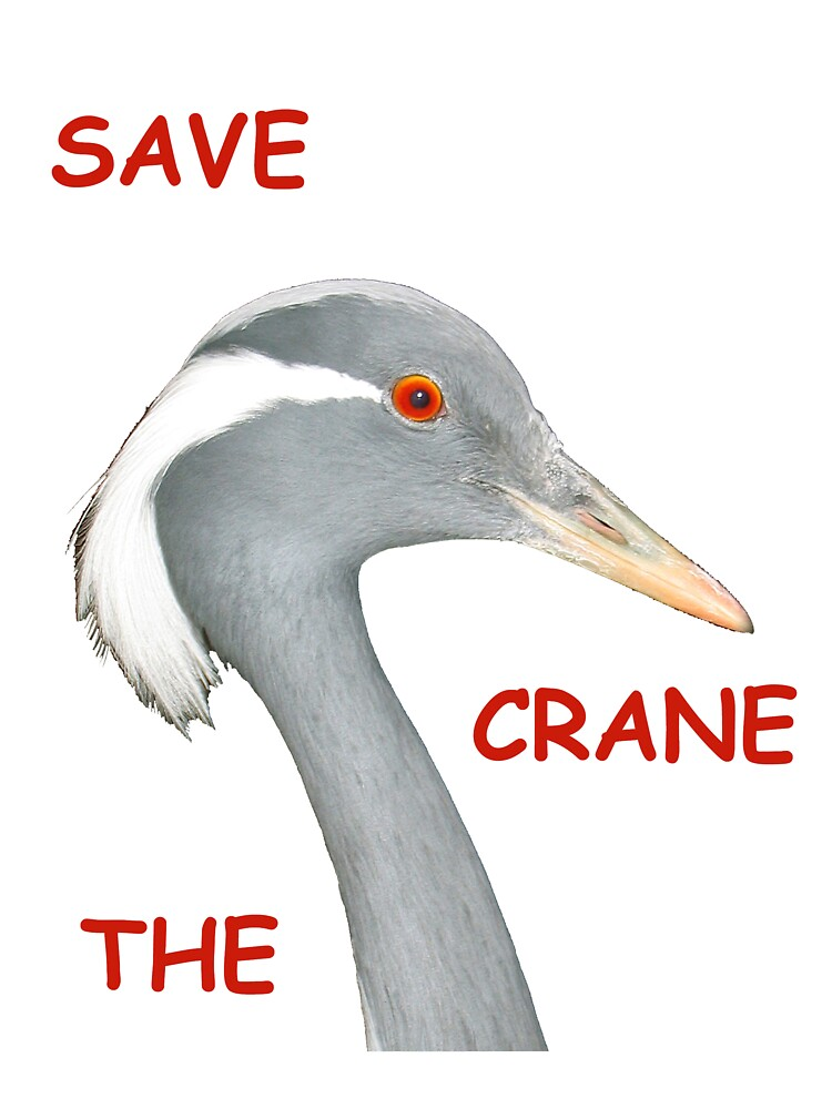 Save The Crane! by BizziLizzy